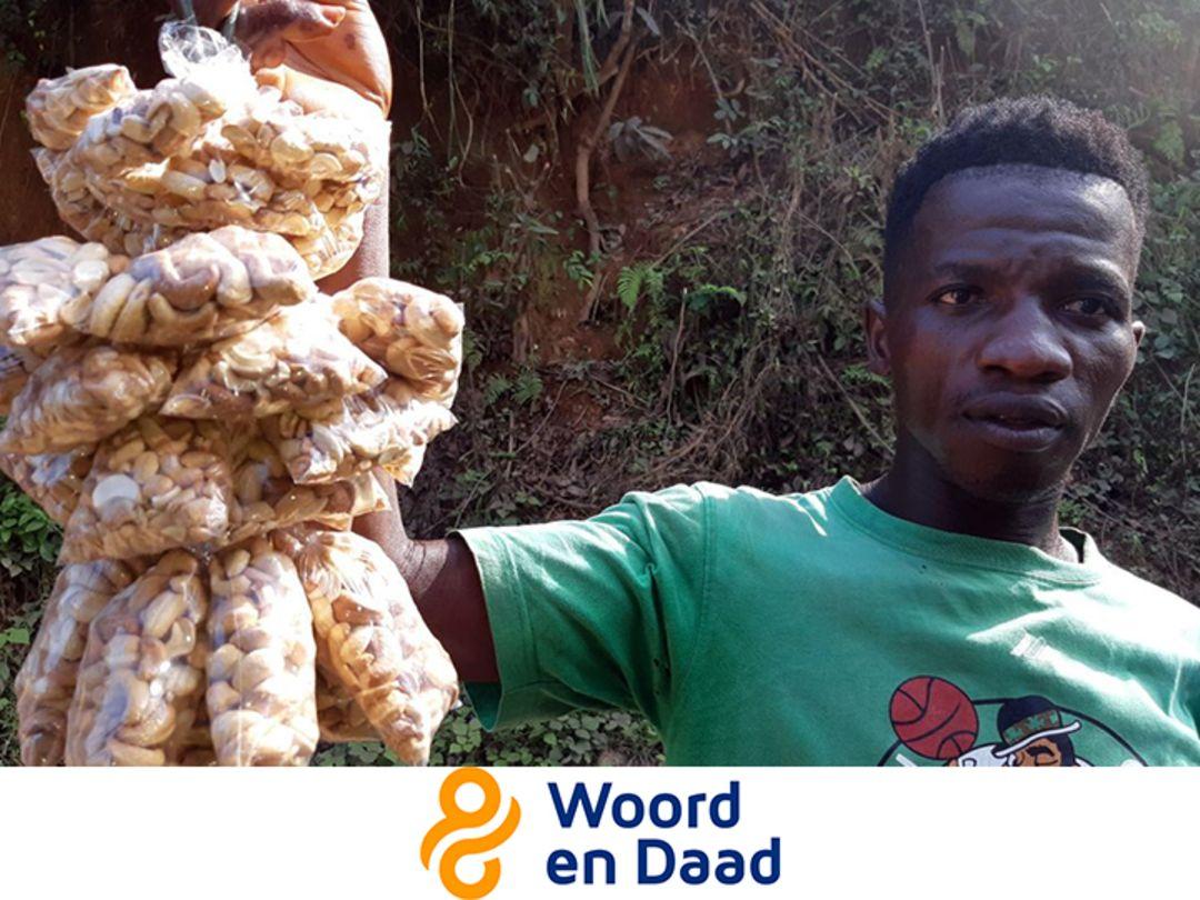 Geran steunt de cashewsector in Sierra Leone