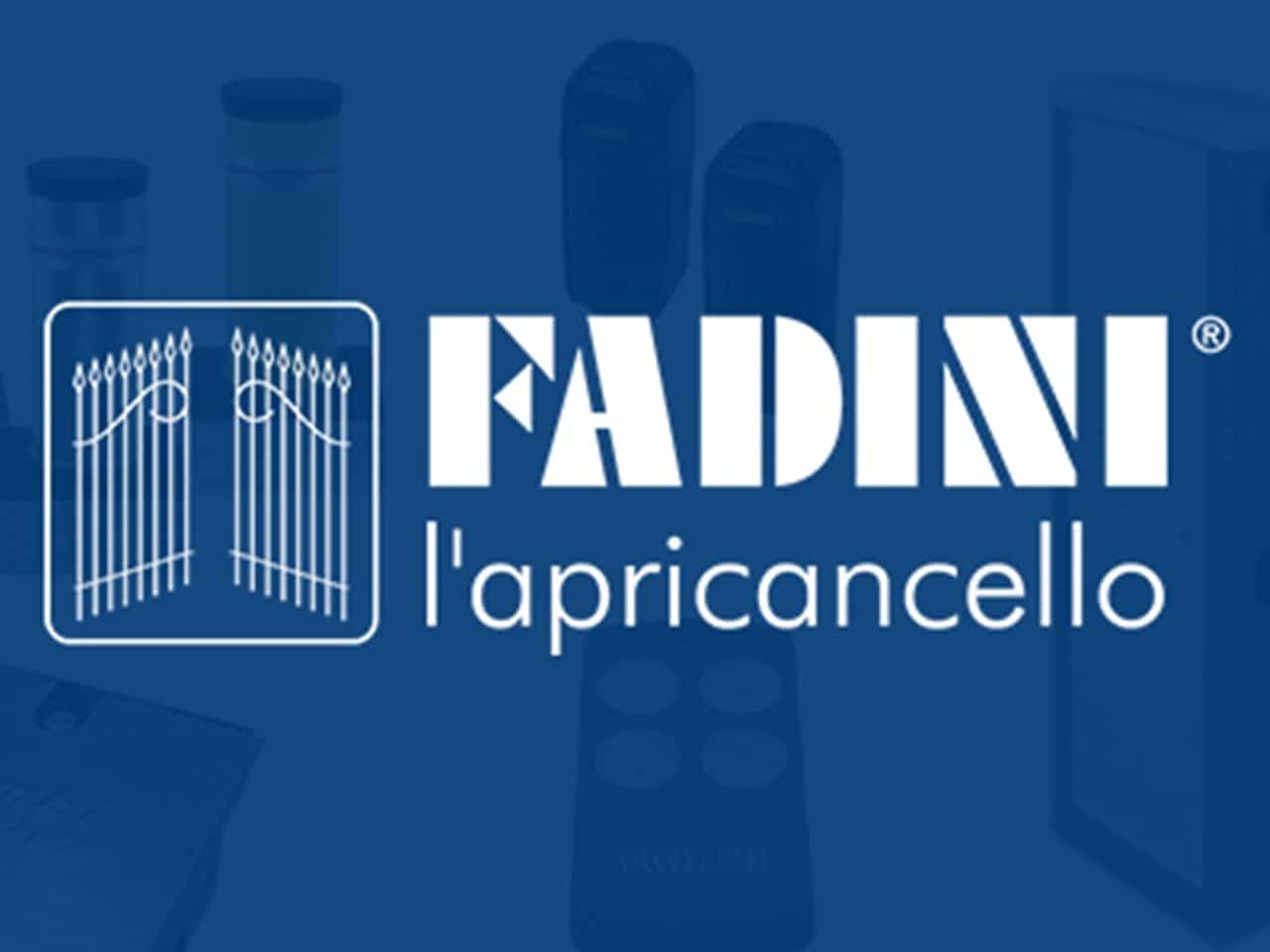 Fadini in beeld