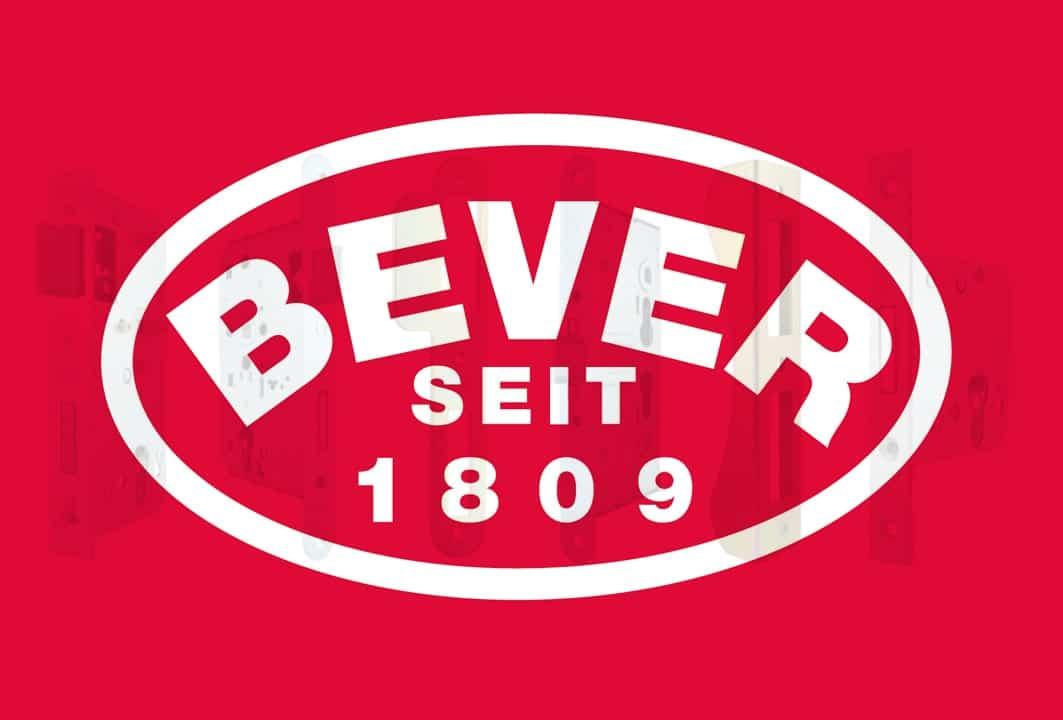 In beeld - Bever